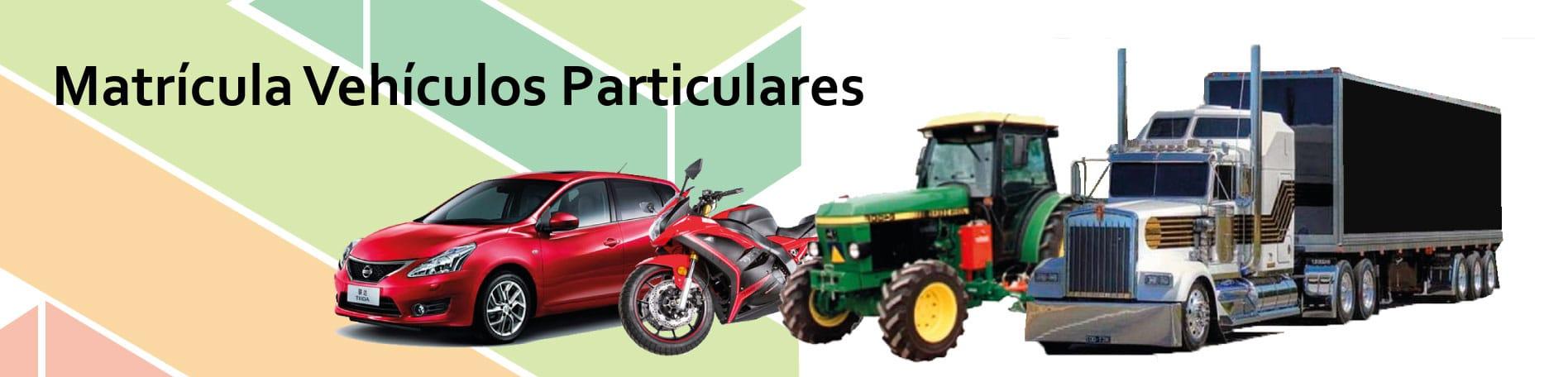 Matricula vehiculos particulares la jagua de ibirico sertti